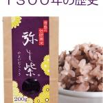 ★弥生紫3×4H29