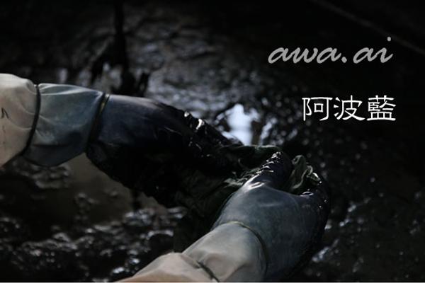 阿波藍/awa ai