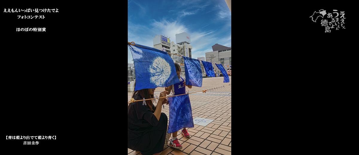 青は藍より出でて藍より青く_吉田圭作